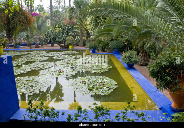 Jardin Majorelle Marrakech Stock Photos Jardin Majorelle
