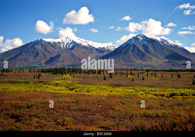 Alaska wilderness fall colors snow capped peaks on Alaska cruise tour train ride to Denali - Stock Image