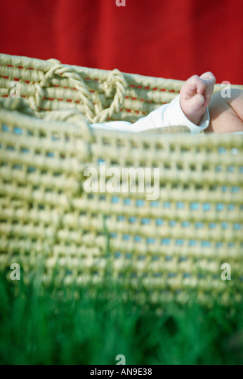 Straw baby carrier on grass - Stock Image
