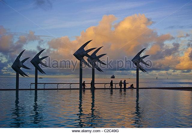 Public swimming lagoon Cairns North Queensland Australia - Stock Image