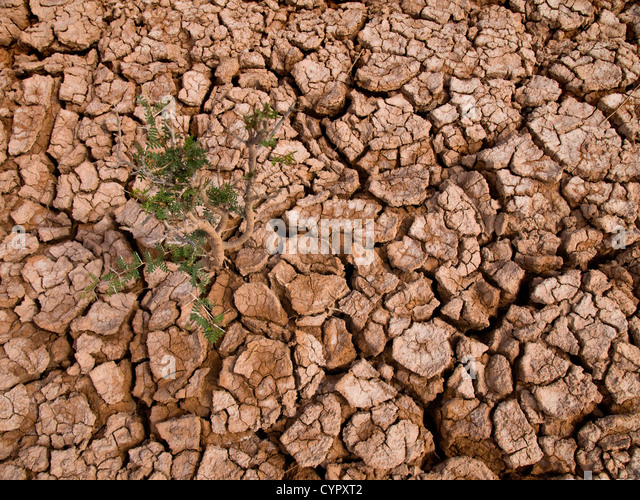 Clay soil stock photos clay soil stock images alamy for Earth or soil