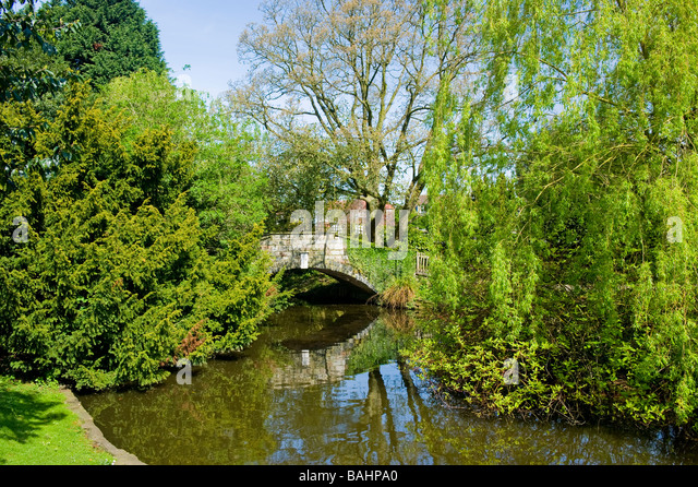 Hump backed stock photos hump backed stock images alamy for Ornamental pond