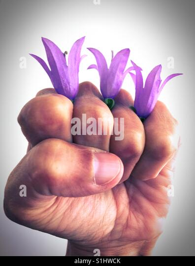 A fist with flowers. - Stock Image