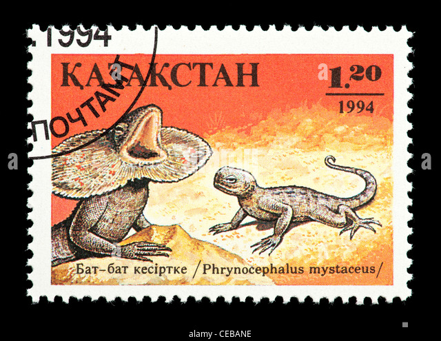 Postage stamp from Kazakhstan depicting a small frilled lizard (Phrynocephalus mystaceus) - Stock Image