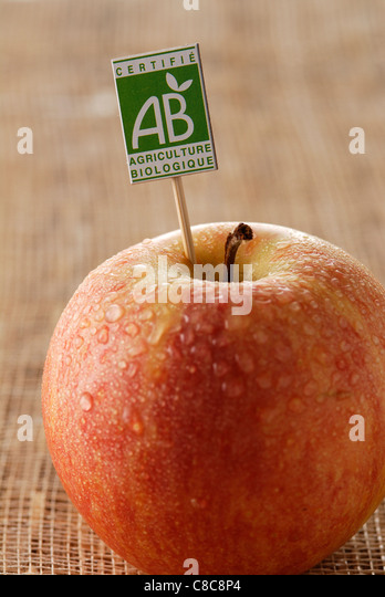 Organic Gala apple - Stock Image