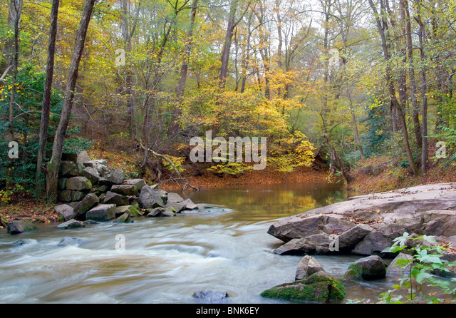 water-stream-landscape-in-the-fall-color