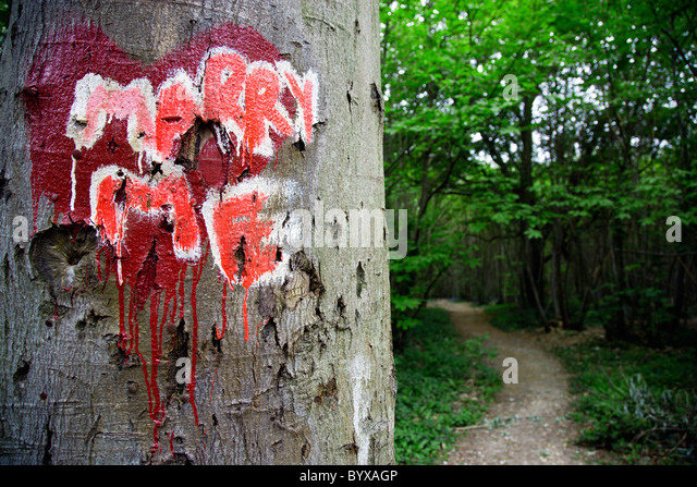 ENGLAND West Sussex Chichester Red Valentine heart painted on trunk of a tree in a forest with the words Marry Me - Stock-Bilder