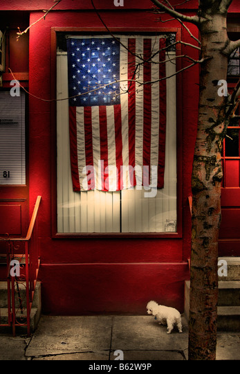 American flag on a window - Stock Image