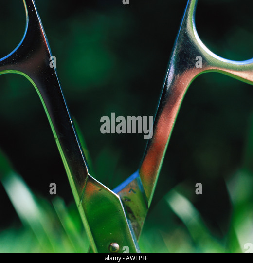 Scissors sticking in grass, close-up - Stock Image