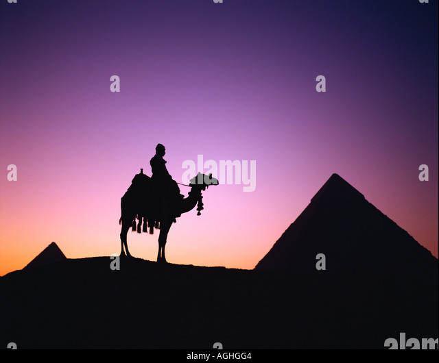 Egypt Cairo Giza Chephren Pyramid Camel and Driver Sunset - Stock Image