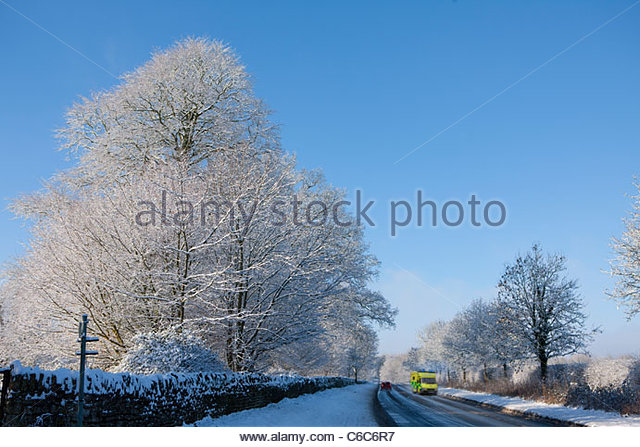 Snow covered trees lining road with traveling cars - Stock-Bilder