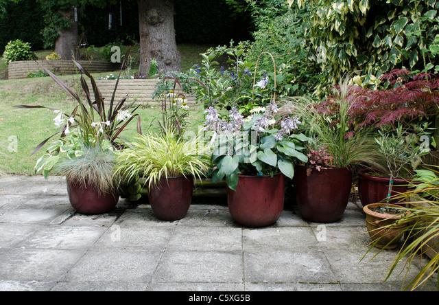Pots patio stock photos pots patio stock images alamy for Best ornamental grasses for pots