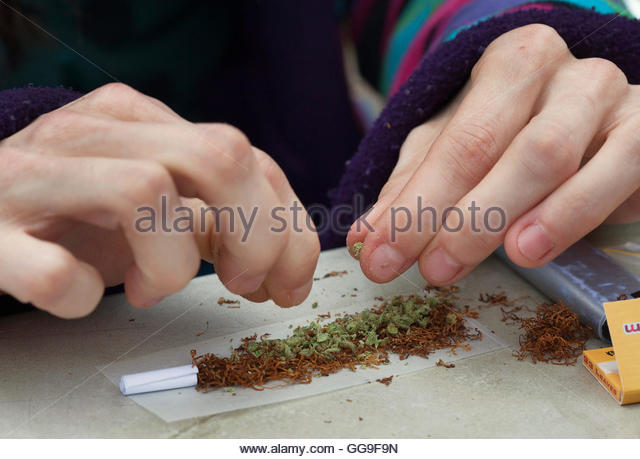 Heidi from Limburg, Belgium, prepares a joint in the Toermalijn coffee shop in Tilburg April 29, 2012. A controversial - Stock Image