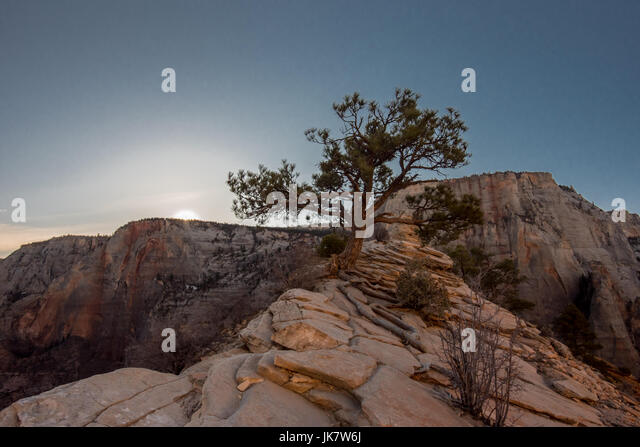 Morning Breaks Over the Canyon  atop Angels Landing - Stock Image