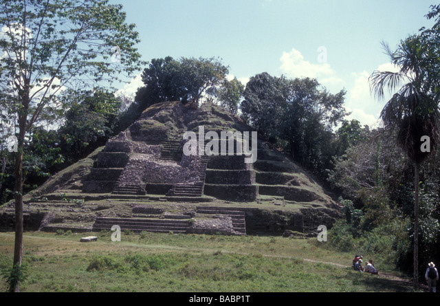stangler figs pyramid Many were wreathed in strangler figs, called matapalos, or tree killers  even  standing at the base of an earthen pyramid in the central plaza of.