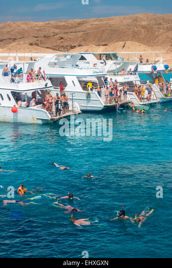 Tourists snorkel around coral reefs in the Red Sea, just off the shores of Hurghada, in Egypt - Stock-Bilder