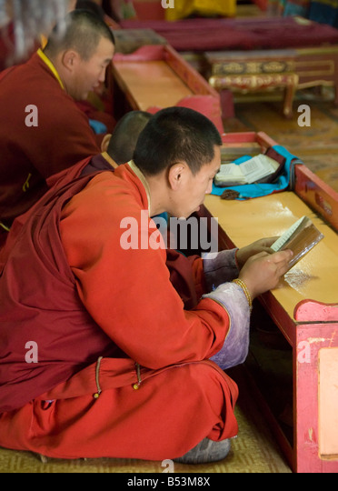 north reading buddhist single men Our network of buddhist men and women in glenmoore is the  join the hundreds of single pennsylvania buddhist already online finding  reading buddhist .