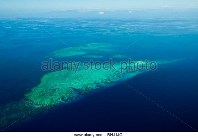 coral reef on Great Barrier Reef - Stock Image