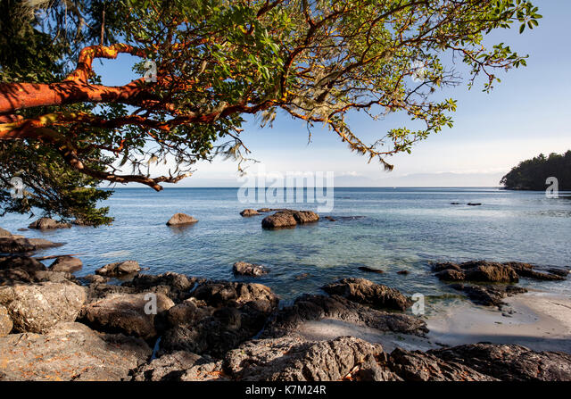Rocky Beach on Becher Bay - East Sooke Regional Park, Sooke, Vancouver Island, British Columbia, Canada - Stock Image