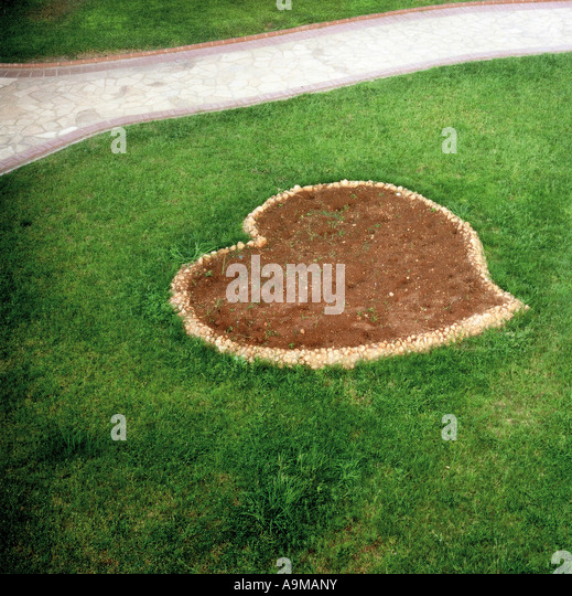 heart form in a meadow - Stock Image