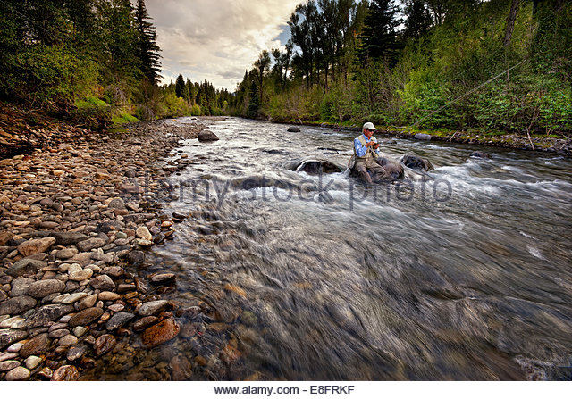 USA, Colorado, Hinsdale County, Lake City, Angler choosing new fly - Stock Image