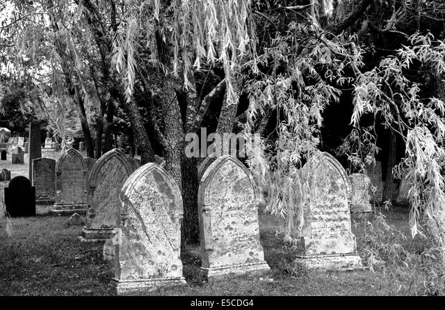 Old gravestones from the 1800s are found in this cemetery in Cape Cod, Massachusetts (MA), USA. B&W image. - Stock-Bilder