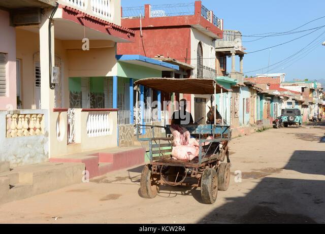 Delivering a butchered hog in horse cart, Trinidad,  Cuba - Stock Image