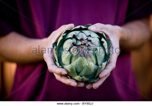 A man holding a globe artichoke - Stock Image