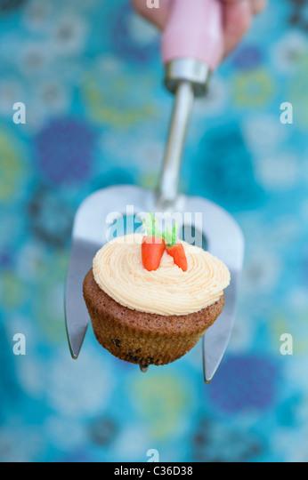 Carrot cupcake on gardening fork - Stock Image