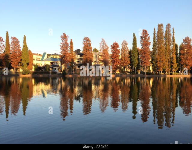 Trees And Houses By The River - Stock-Bilder
