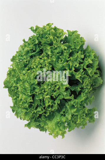 Still Life Salad - Stock Image