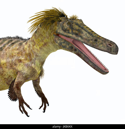 Austroraptor was a carnivorous theropod dinosaur that lived in Argentina in the Cretaceous Period. - Stock Image