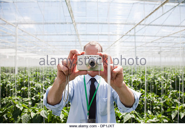 Scientist using camera in greenhouse - Stock Image