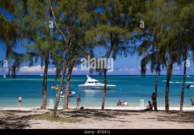 La Pointe aux Canonniers public beach filoas trees north east coast Mauritius Africa - Stock Image