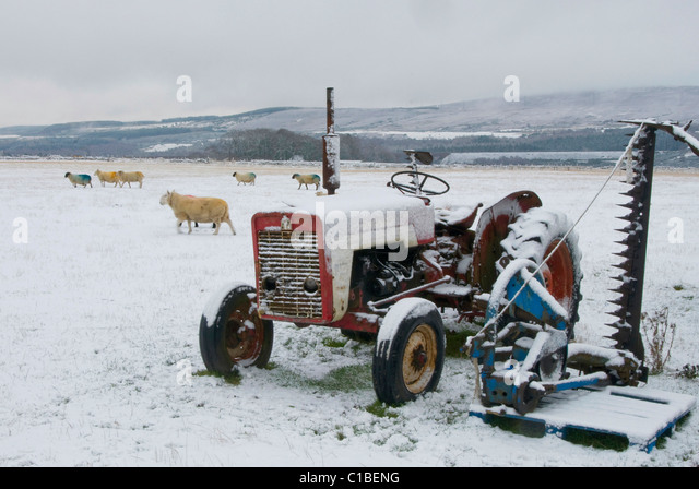 Working vintage tractor in snow by Culloden Battlefield Inverness-shire - Stock Image