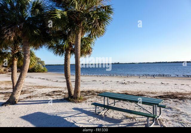 Florida FL New Port Richey Green Key Robert K Rees Memorial Park Gulf of Mexico public beach sand sabal palms palm - Stock Image
