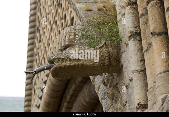 Dragon gargoyle stock photos