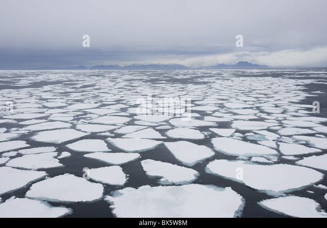 Ice floe, drift ice, Greenland, Arctic, Polar Regions - Stock Image