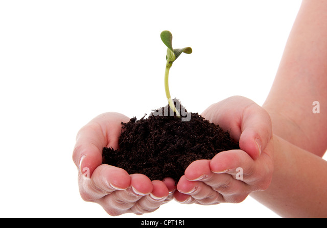 Sand soil hand stock photos sand soil hand stock images for Black garden soil