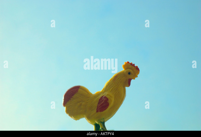 ROOSTER & SKY - Stock Image