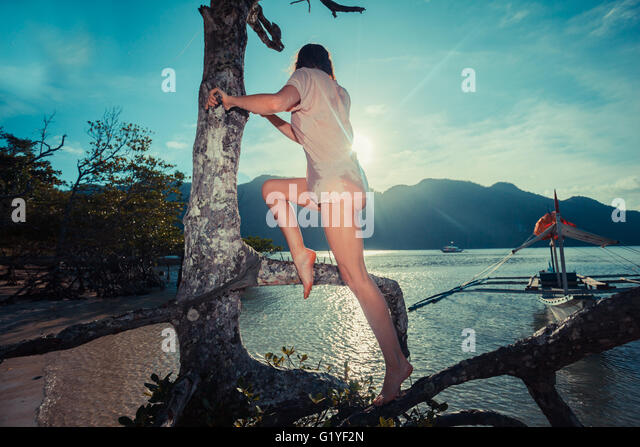 A young woman is climbing a tree on a tropical beach - Stock Image