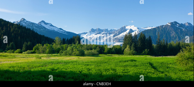 Scenic view of Brotherhood Meadow in the Mendenhall Valley, Mendenhall Glacier and Towers beyond in the distance,Juneau, - Stock Image