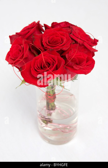 A bundle of red roses sit in water in a clear vase. - Stock Image
