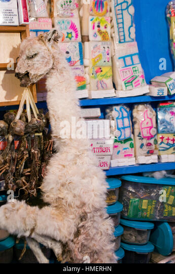 Dried llama fetuses display in a chiflera shop in the Witches Market in La Paz, for use in sacrifices to mother - Stock Image