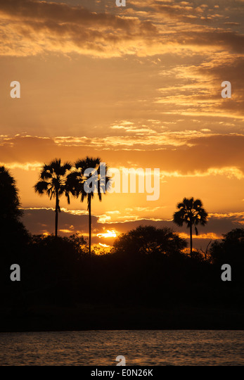 Sunset on the Zambezi River, Zambia, Africa - Stock-Bilder