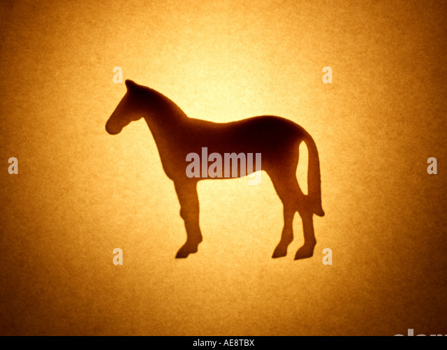 Horse Animal - Stock Image