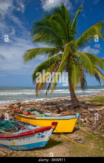 Palm trees and old fishing boats on the coast of western Puerto Rico, Caribbean. - Stock Image