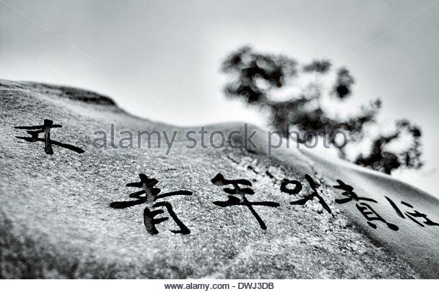 Korean stone engraving, Chungju, South Korea. - Stock Image