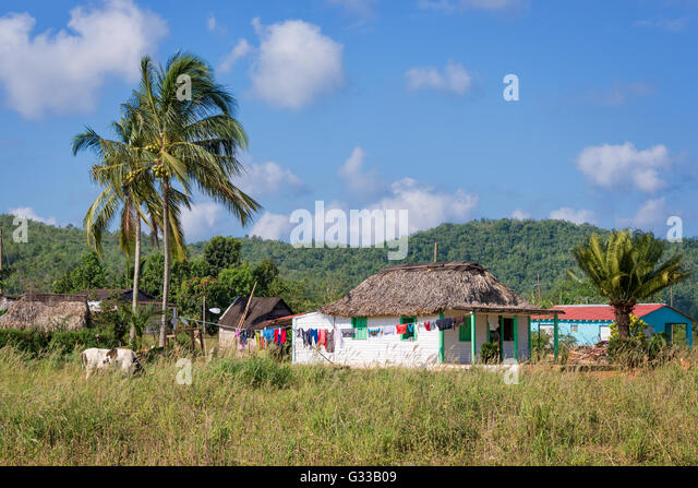 Thatched  house in the countryside near Vinales, Cuba - Stock Image
