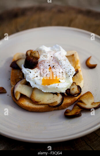Toast with porcini mushrooms and poached egg - Stock Image